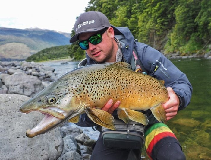 Brown Trout fishing in New Zealand